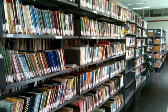 Biblioteca conta com um acervo de 30 mil livros de diversos gêneros / Foto: Marcelo Paiva